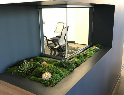 Preserved moss and succulent planter bed